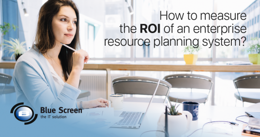 How to measure the ROI of an enterprise resource planning system?
