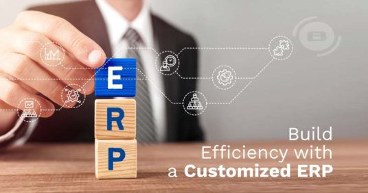 CEO Decision-Making: the benefits of building efficiency with a Customized ERP